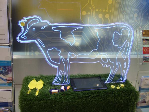 Афк «система» произведет метки для крупного рогатого скота россии