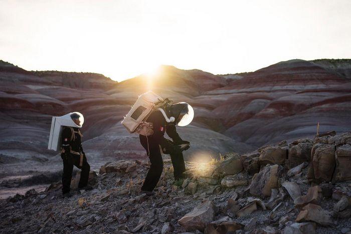 Арктические бактерии для поиска инопланетной жизни