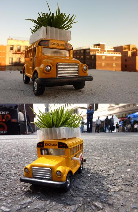 Bus roots project: газон на крыше автобуса