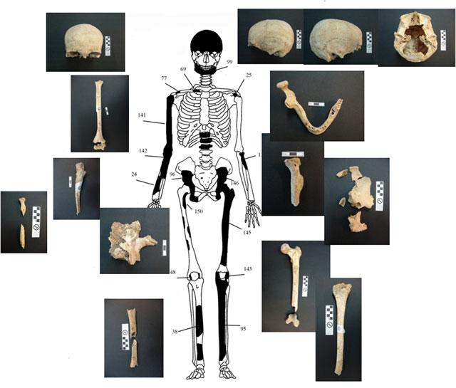 «Царская» гробница в амфиполисе: найдено захоронение пяти человек