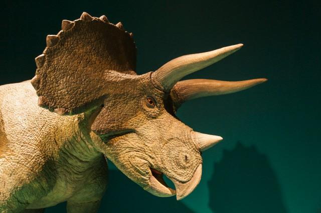 Динозавры начали вымирать раньше, чем мы думали