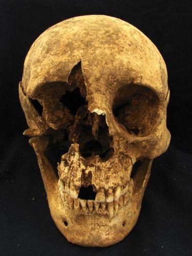 «Иногородцы» древнего рима: мигранты или рабы?