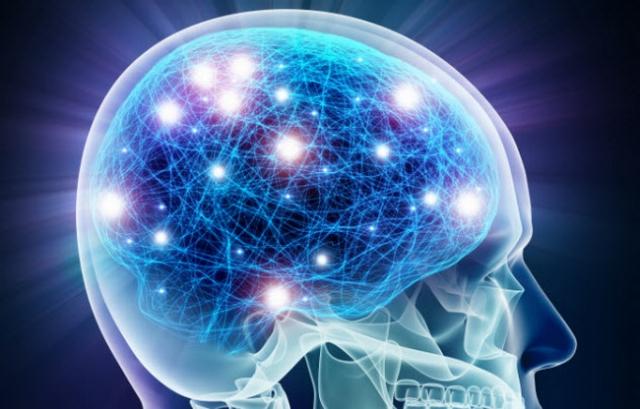Из клеток кожи ученые создали клетки мозга