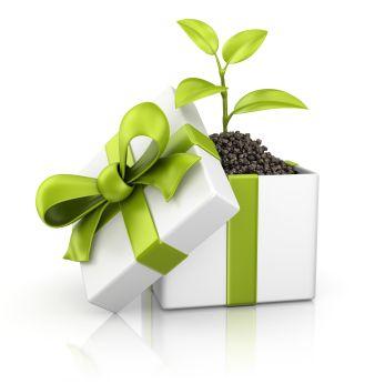 Энергоэффективная кофеварка – отличный подарок к рождеству!