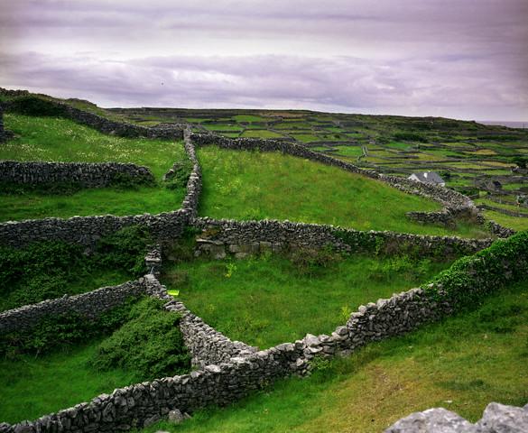 Как древняя ирландия связана с ближним востоком и южнорусскими степями