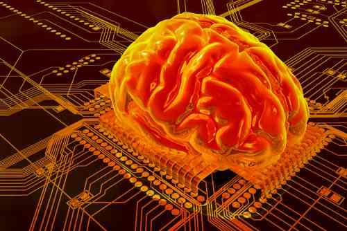 Как создать человеческий мозг