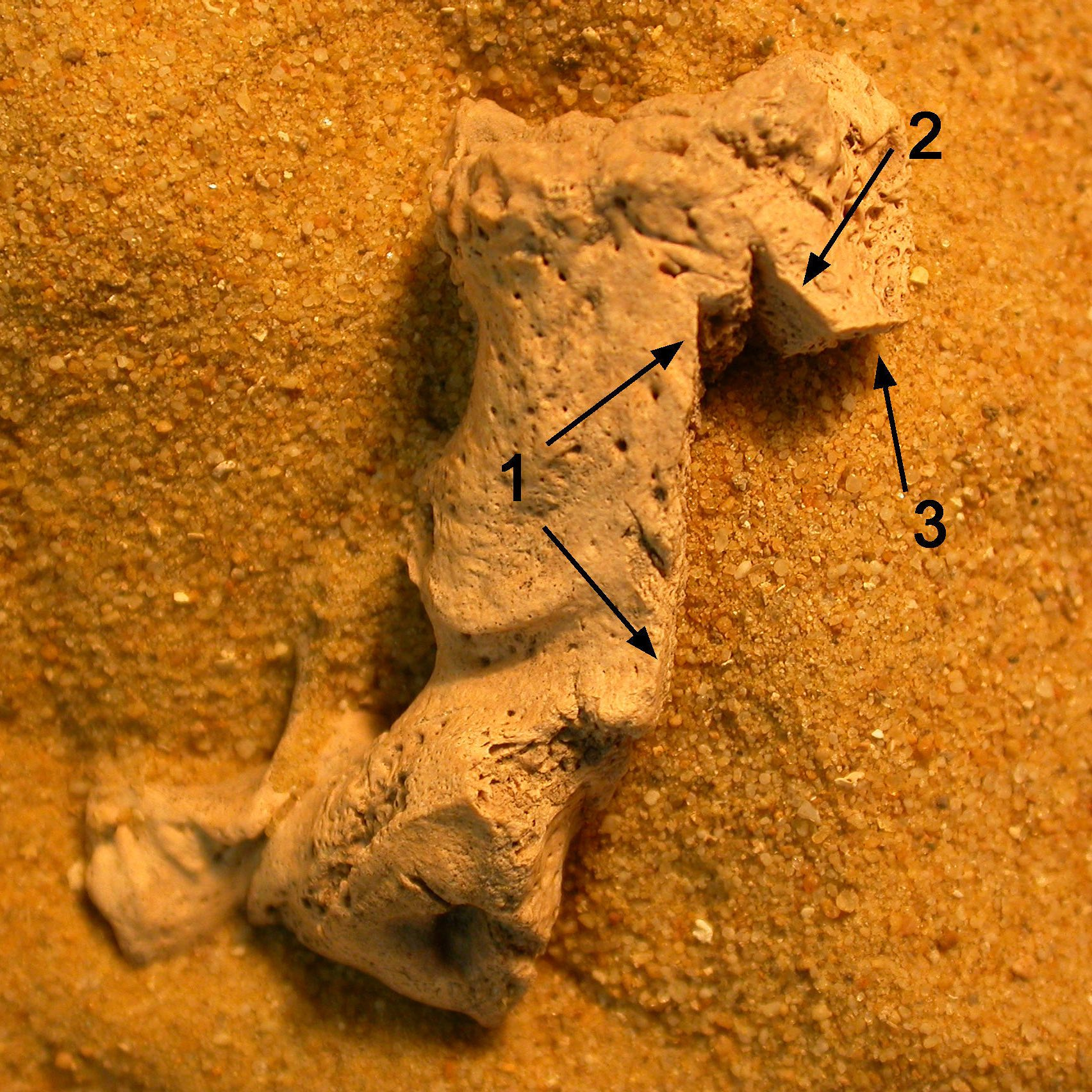 Как в средневековой англии предотвращали «восстание мертвецов»