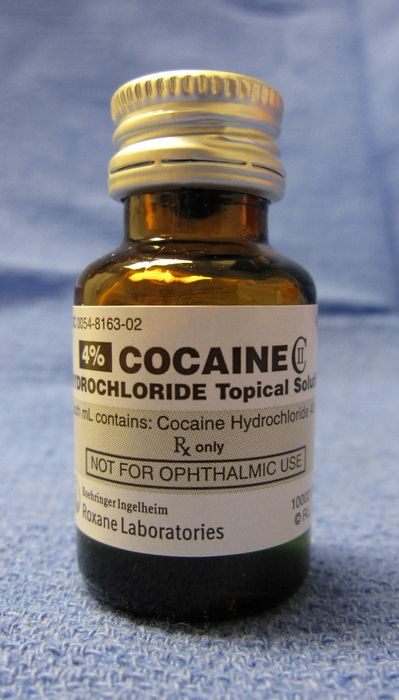 Кокаин разлагает мозг