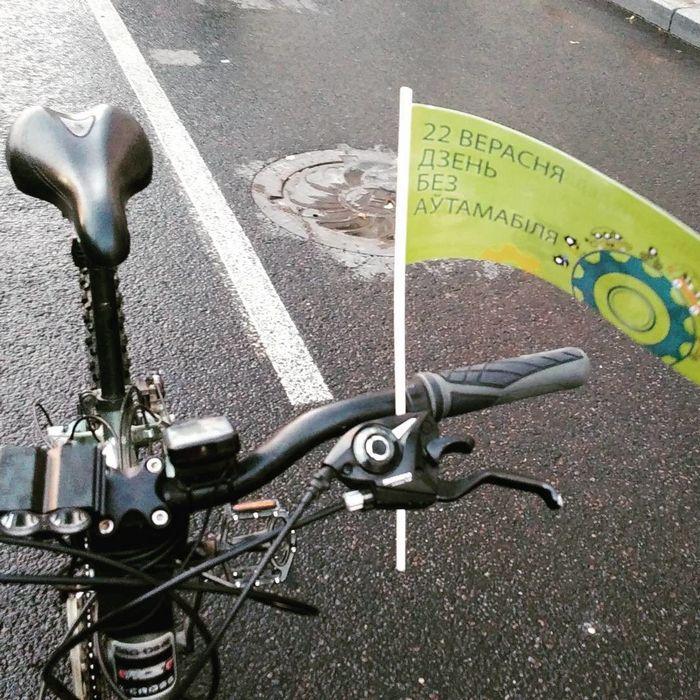 Международный день без автомобиля: итоги