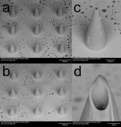 Микроиглы и квантовые точки ученые смогут использовать для обнаружения рака кожи