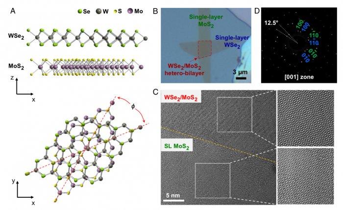 Монослои халькогенидов оптимальны для создания лазеров и светодиодов