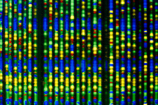 Можно ли предсказать функцию гена