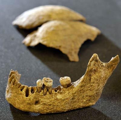 Найденный в шотландии скелет мог принадлежать королю викингов
