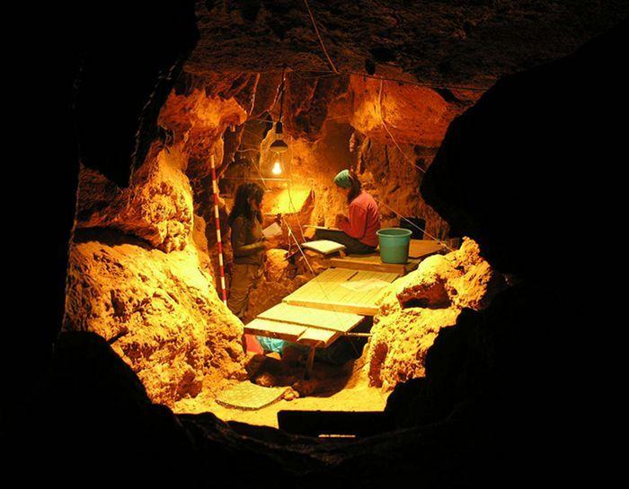 Неандертальцы умели варить пищу?