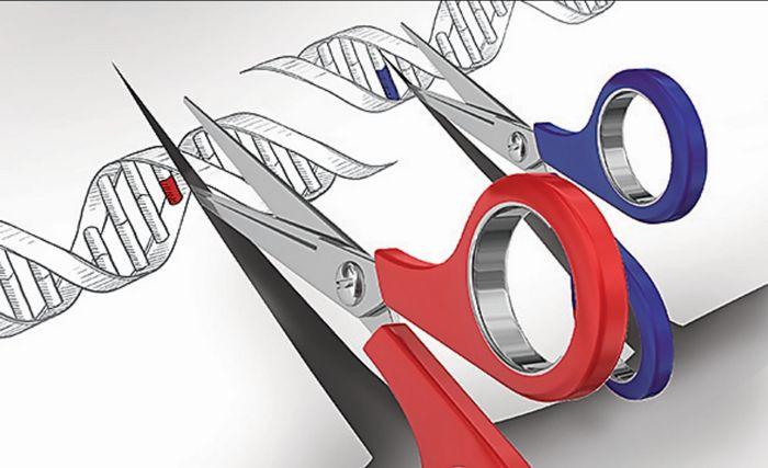 Новый генетический тест поможет в терапии рака легкого
