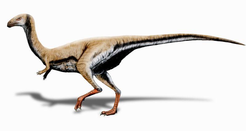 Обеззубевшие динозавры