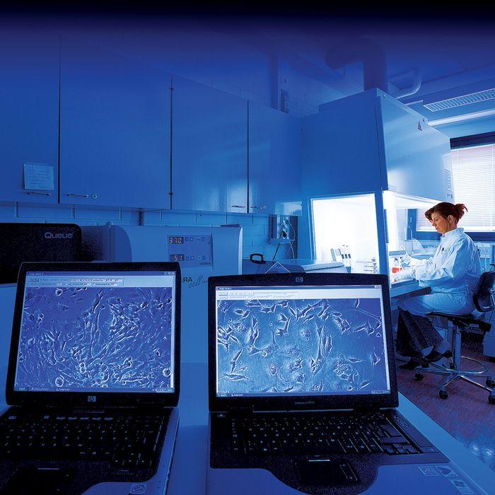 Оптэк открывает направление «трибология и механические измерения»