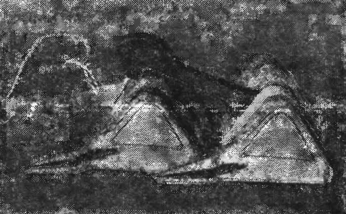 «Перевертыш» — транспорт пустынь