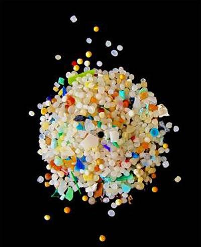 Пластмассовая жизнь обитателей моря