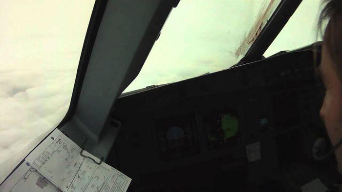 Птицы против... самолета