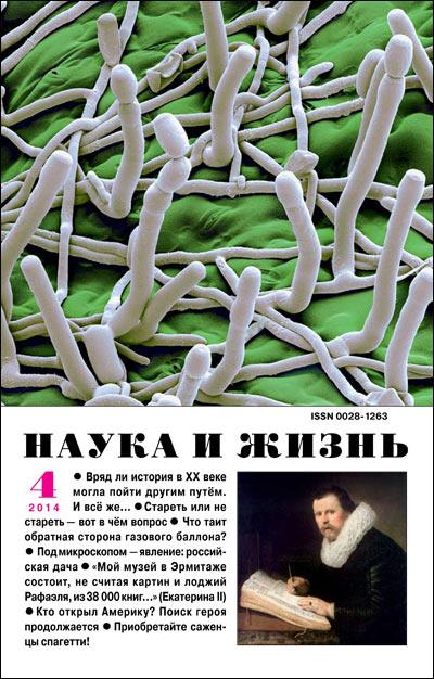 Разгадана тайна свечения сибирских червей