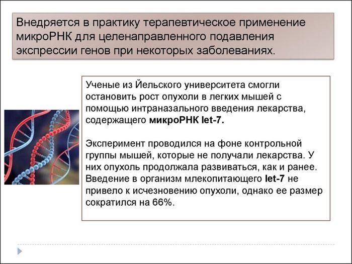 Российские ученые расшифровали ген белка, который поможет при тестировании лекарств