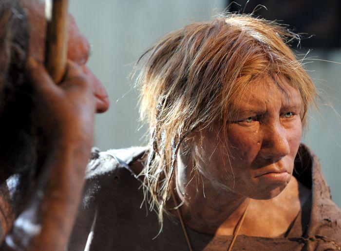 Сапиенсы не были умнее неандертальцев