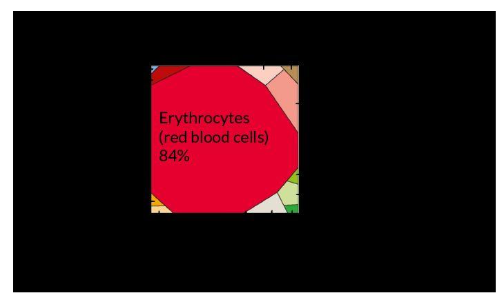 Сколько клеток в человеке