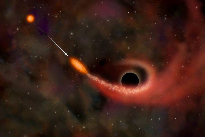 Сколько звезд «съедают» черные дыры