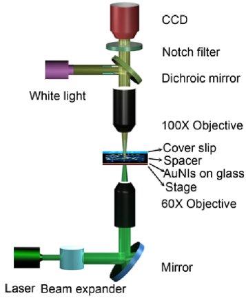 Создана лазерно-пузырьковая ручка, способная писать наночастицами, размером в 1 нанометр » dailytechinfo