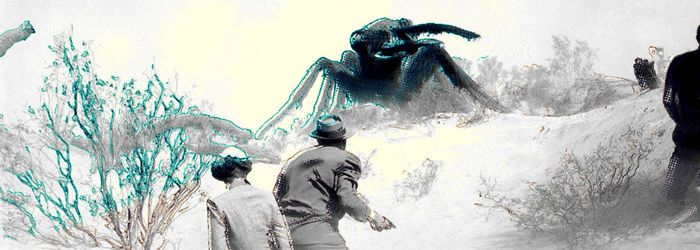 Ученые нашли муравьев супер-солдат