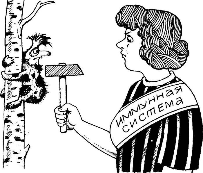 Ученые узнали, как выживают бактерии холеры в кишечнике человека