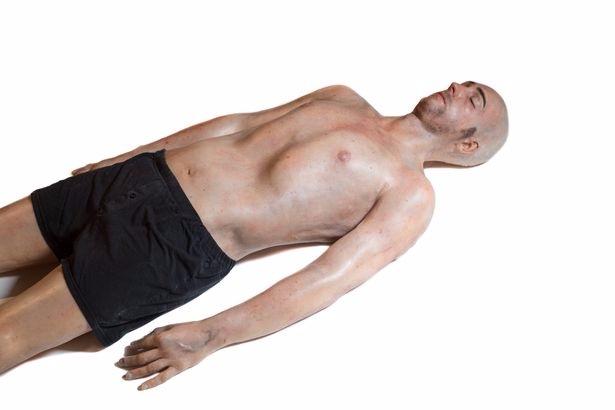 Учёные создали 3d-печатного человека с максимально реалистичными внутренними органами