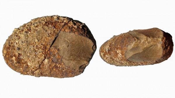 В чили нашли старейшие в америке каменные орудия