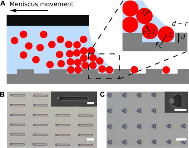 В ibm научились собирать гигантские «искусственные молекулы»