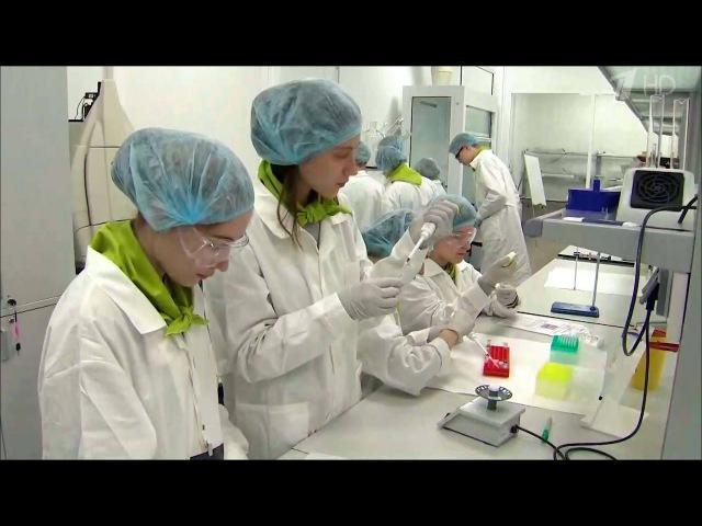 В образовательном центре «сириус» в сочи назвали победителей инженерной олимпиады