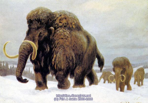 Вымирание мамонтов – виновата ли генетика?